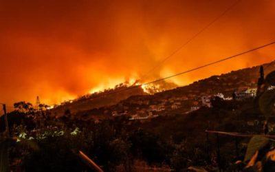 Knysna Fire